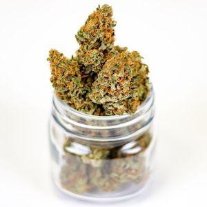 Cannabis Dispensary Insurance La Verne